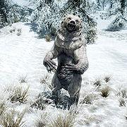 Snow Bear.jpg