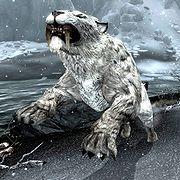 Snowy Sabre Cat.jpg