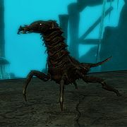Creature-Chaurus.jpg