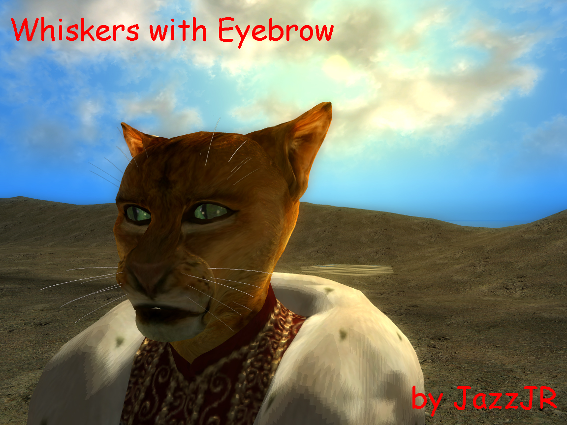 Exemple sur Whiskers and Eyebrows